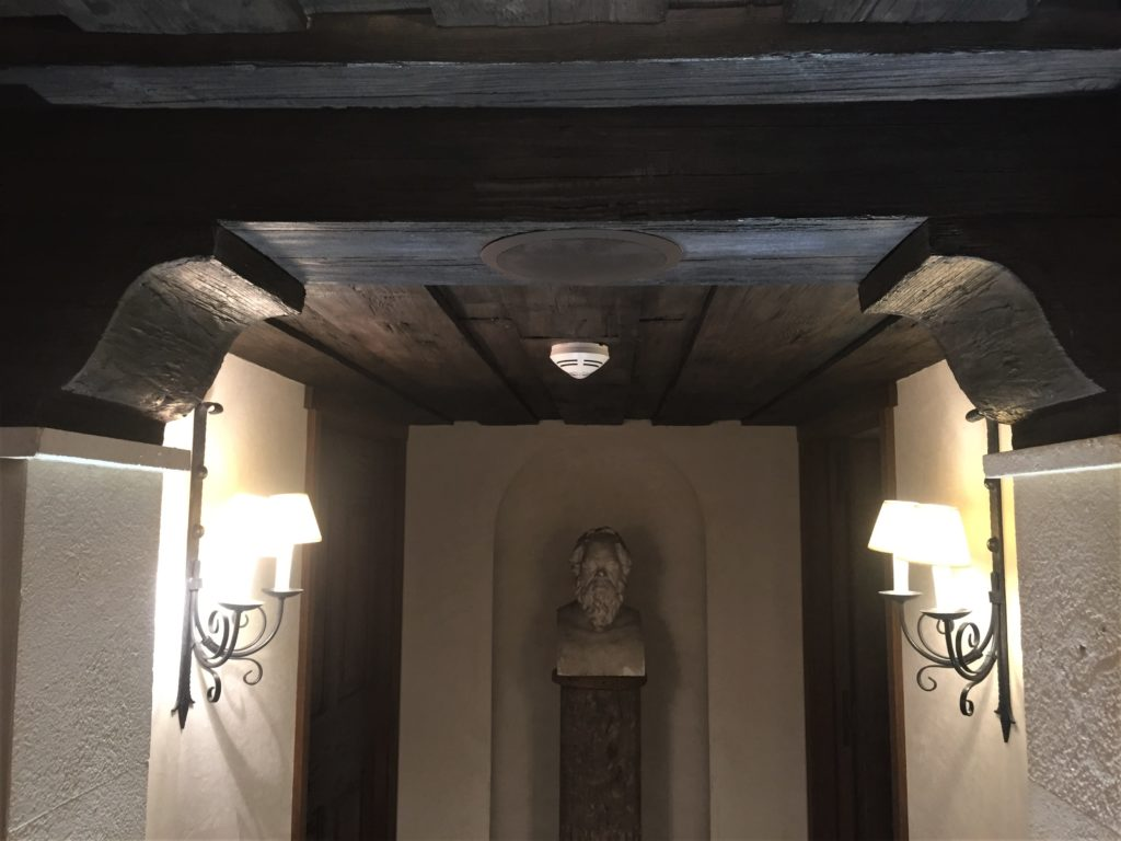 Travaux & décoration en plâtre - imitation bois - Décoration en staff imitation faux rochers
